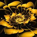 Yellow Flower by Anastasiya Malakhova