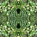 Yellow Flower Mandala 1 by Julia Woodman
