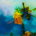 Yellow Flower On Blue Sky by Evgeny Parushin