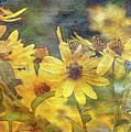 Yellow Flower View 4851 Idp_2 by Steven Ward