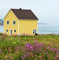 Yellow House And Fireweed Flowers by Les Palenik