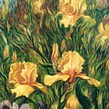 Yellow Irises by Hans Droog