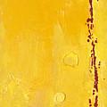 Yellow by Jaime  Becker