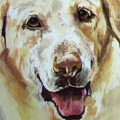 Yellow Lab by Debbie Anderson