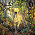 Yellow Lab In Fall by Mark Fredrickson