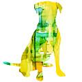 Yellow Lab by Marla Beyer