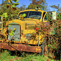 Yellow Mack Truck by Jerry Gammon