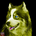 Yellow Modern Siberian Husky Dog Art - 6024 - Bb by James Ahn