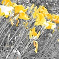 Yellow Moment In Time by Jennifer Craft