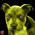 Yellow Pitbull Puppy Pop Art - 7085 Bb by James Ahn
