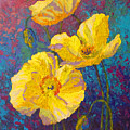 Yellow Poppies by Marion Rose