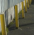Yellow Posts by Sara Stevenson