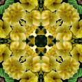 Yellow Primrose Kaleidoscope by Smilin Eyes  Treasures