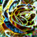 Yellow Rose Fractal by Tracey Everington