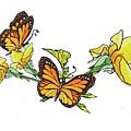 Yellow Roses And Monarch Butterflies by Irina Sztukowski