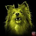 Yellow Sheltie Dog Art 0207 - Bb by James Ahn