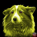 Yellow Shetland Sheepdog Dog Art 9973 - Bb by James Ahn