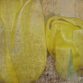 Yellow Strands by Traci Cottingham