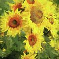 Yellow Sunflowers by Tina LeCour
