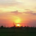 Yellow Sunset At Park by Atullya N Srivastava
