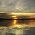 Yellow Sunshine by Michelle Meenawong
