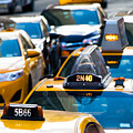 Yellow Taxis by SR Green