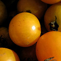 Yellow Tomatoes by Lori  Secouler-Beaudry