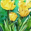 Yellow Tulips by Patty Strubinger