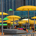 Yellow Umbrellas by Elaine Manley