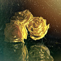 Yellow Vintage Roses  by OLena Art Brand