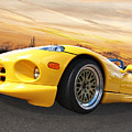 Yellow Viper Rt10 by Gill Billington
