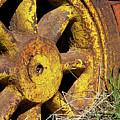 Yellow Wheel by Phyllis Denton