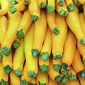 Yellow Zucchini by Bruce Block