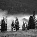 Yellowstone 157 by Ingrid Smith-Johnsen