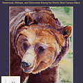 Yellowstone Bear Tales - Adventures, Mishaps And Discoveries Among The World's Most Famous Bears by Marsha Karle