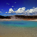 Yellowstone Blues by Lynda Nolte