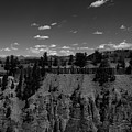 Yellowstone Canyon by Klaire Dixius
