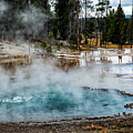 Yellowstone Colors #2 by Scott Read