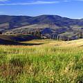 Yellowstone Landscape 3 by Marty Koch