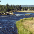 Yellowstone Landscape by Charles  Ridgway