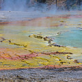 Yellowstone National Park 3 by John McGraw