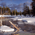 Yellowstone National Park by Thomas R Fletcher