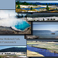Yellowstone Park August Panoramas Collage by Thomas Woolworth