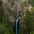 Yellowstone Waterfall by Roger Mullenhour