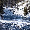 Yellowstone Winter One by Bob Phillips