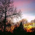 Yesterday's Sky by Frank J Casella