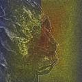 Yeti by Tim Allen