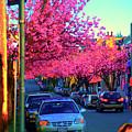 Yew Street Spring by Paul Kloschinsky