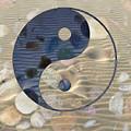 Yin Yang Harmony by Anthony Robinson