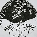 Yin Yang by Pati Hays